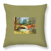 Fall Foliage In Vermont Throw Pillow