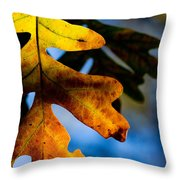 Fall Foliage Leaf Near Ruidoso Nm Throw Pillow