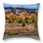 Fall Foliage Near Ghost Ranch Throw Pillow