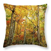 Fall Foliage On The Hike Up Mount Monadnock New Hampshire Throw Pillow