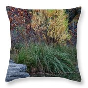 Fall Foliage Reflections At Lost Maples Throw Pillow