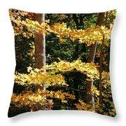 Fall Forest 1 Throw Pillow