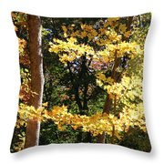 Fall Forest 3 Throw Pillow