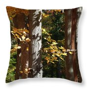 Fall Forest 4 Throw Pillow