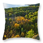Fall Forest And Lake Top View Throw Pillow