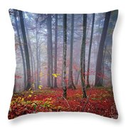 Fall Forest In Fog Throw Pillow