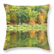 Fall Forest Reflection Throw Pillow