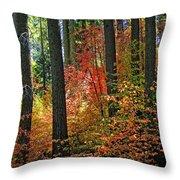 Fall Forest Splendor Throw Pillow