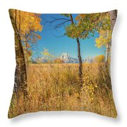 Fall From Oxbow Bend In Grand Tetons Throw Pillow