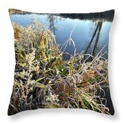 Fall Frost On Grasses Along Nippersink Creek Throw Pillow