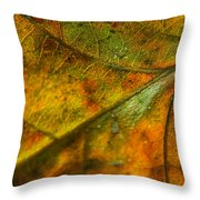 Fall Fusion Throw Pillow
