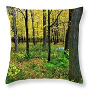 Fall Fusion Throw Pillow
