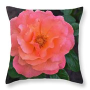 Fall Gardens Full Bloom Harvest Rose Throw Pillow