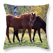 Horses Fall Grazing Throw Pillow