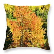 Fall Hillsides Above Dillon Reservoir Throw Pillow