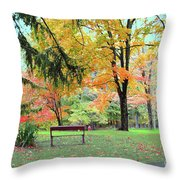 Fall In Brown County Throw Pillow