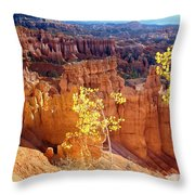 Fall In Bryce Canyon Throw Pillow
