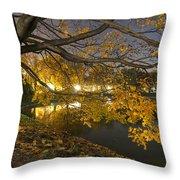 Fall In Dresden Throw Pillow