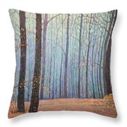 Fall In Forest Throw Pillow