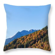 Fall In Gstaad Throw Pillow