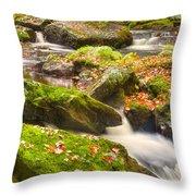Fall In Henniker Throw Pillow