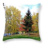 Fall In Kaloya Park 1 Throw Pillow