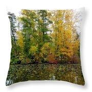 Fall In Kaloya Park 10 Throw Pillow