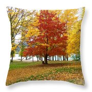 Fall In Kaloya Park 5 Throw Pillow