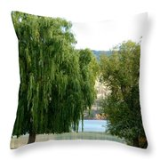 Fall In Kaloya Park 6 Throw Pillow