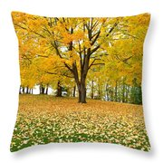 Fall In Kaloya Park 7 Throw Pillow