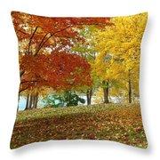 Fall In Kaloya Park 9 Throw Pillow