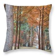 Fall In Korea Throw Pillow