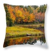 Maine Fall Throw Pillow