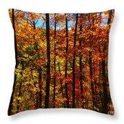 Fall In Ontario Canada Throw Pillow