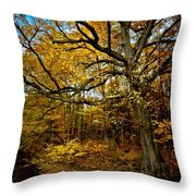Fall In Pennsylvania Throw Pillow