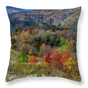 Fall In Tennessee Throw Pillow