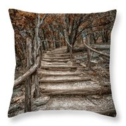 Fall In Texas Throw Pillow