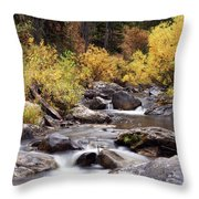 Fall In The Grand Tetons Throw Pillow