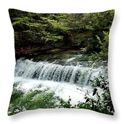 Fall In The Quiet Throw Pillow
