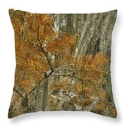 Fall In The Swamp Throw Pillow