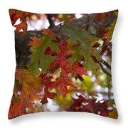 Fall In Virginia Throw Pillow