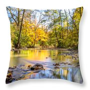Fall In Wisconsin Throw Pillow by Steven Santamour