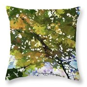 Fall In Woods Throw Pillow
