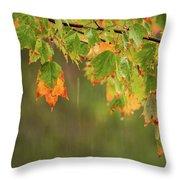 Fall-ing Rain Square Throw Pillow