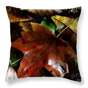 Fall Into Fall Throw Pillow