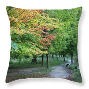 Fall Is Arriving Throw Pillow