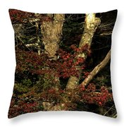 Fall Is Closing In Throw Pillow