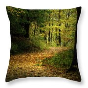Fall Is Just Around The Corner Throw Pillow