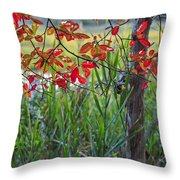 Fall Is Upon Us Throw Pillow