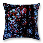 Fall Jewels Throw Pillow